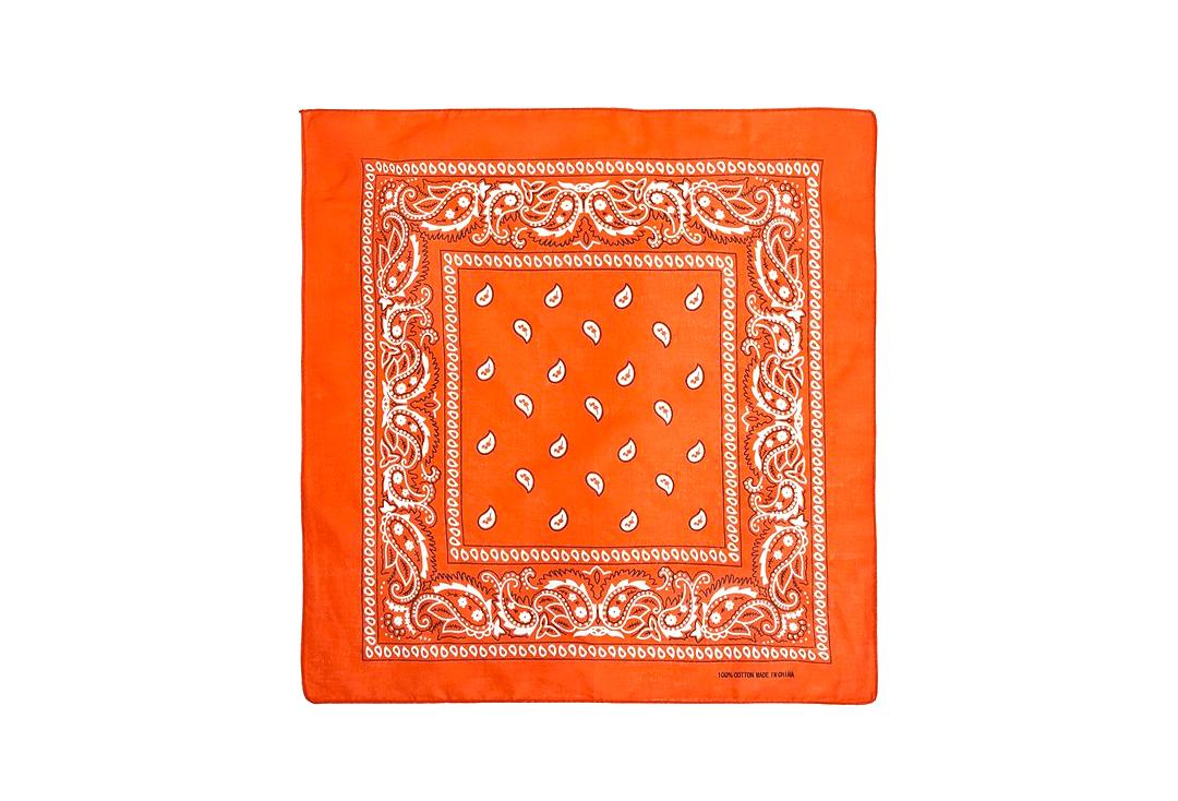 Void Clothing | Orange Paisley Cotton Bandana