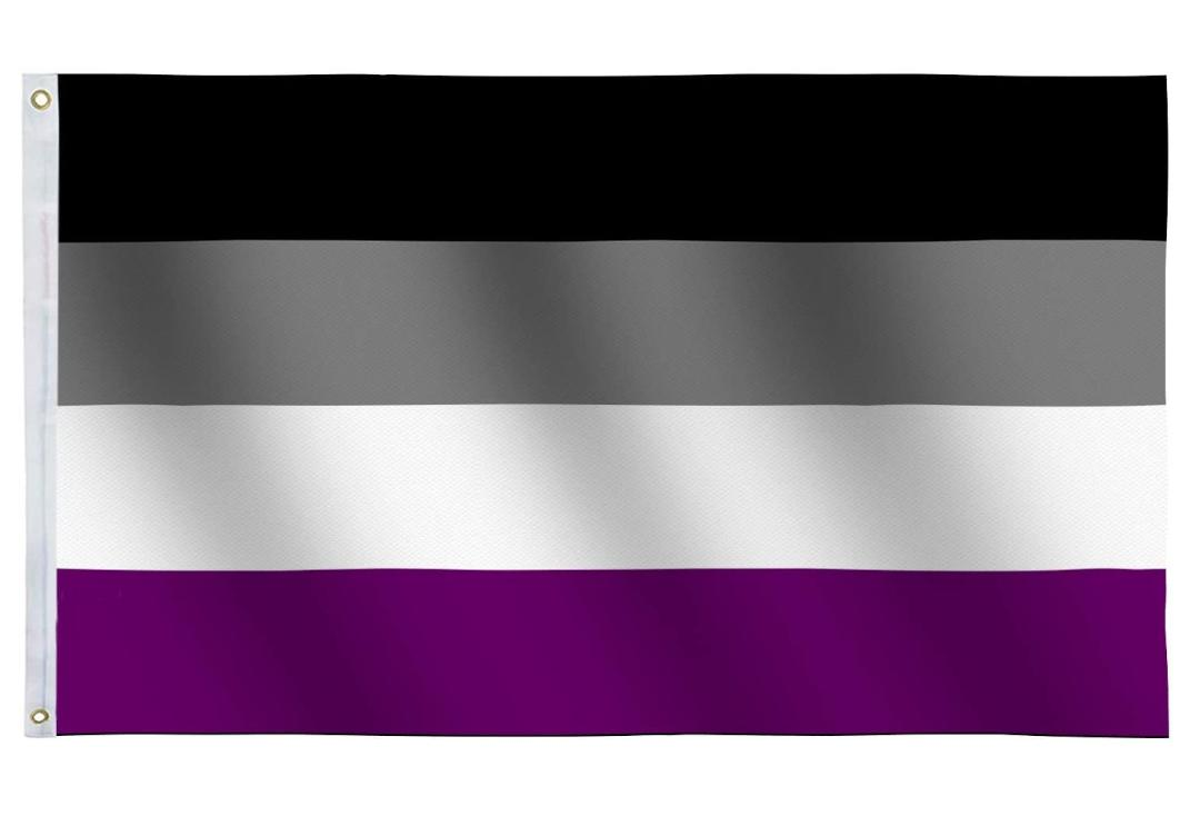 Void Clothing | Large Asexual Pride Flag