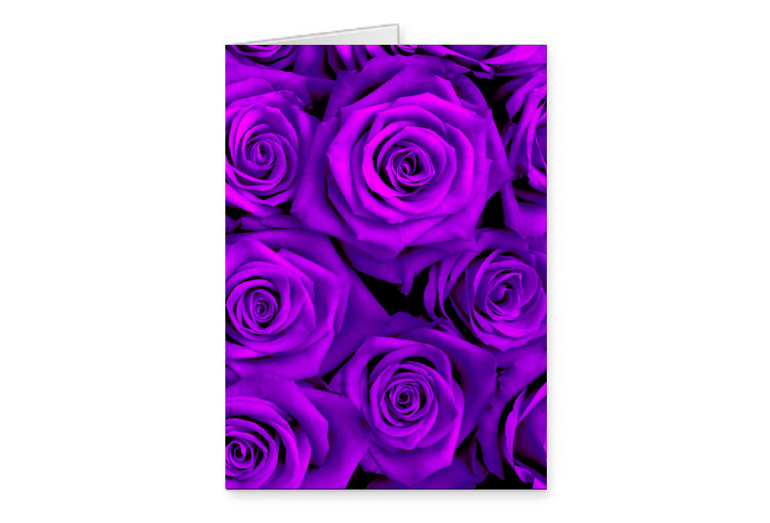 Void Clothing | Purple Roses Greetings Card
