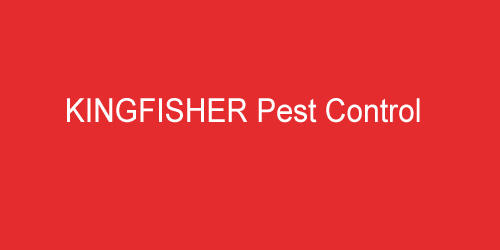 KINGFISHER Pest Control