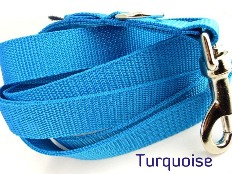 Turquoise webbing multiway lead