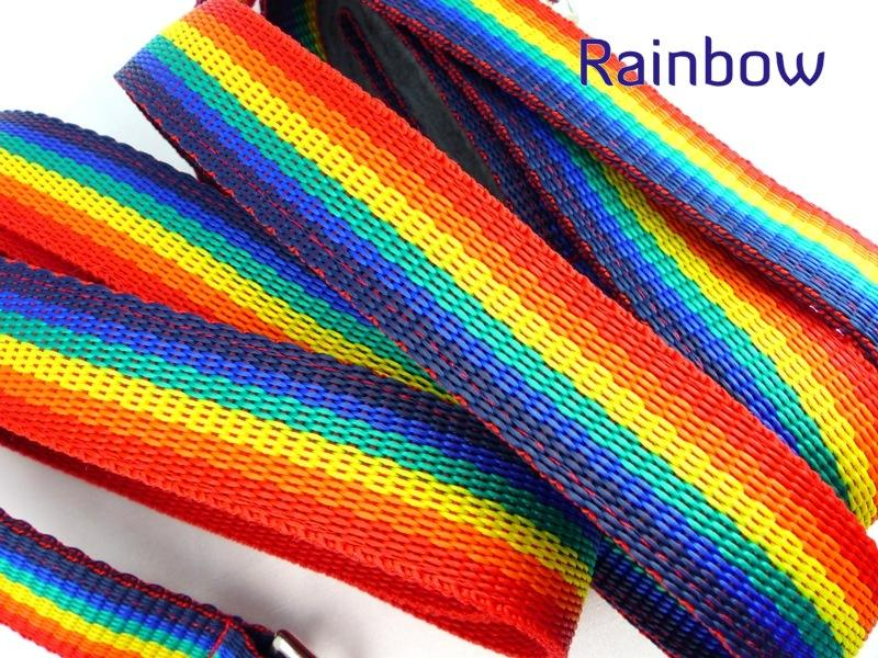 Rainbow webbing long lead