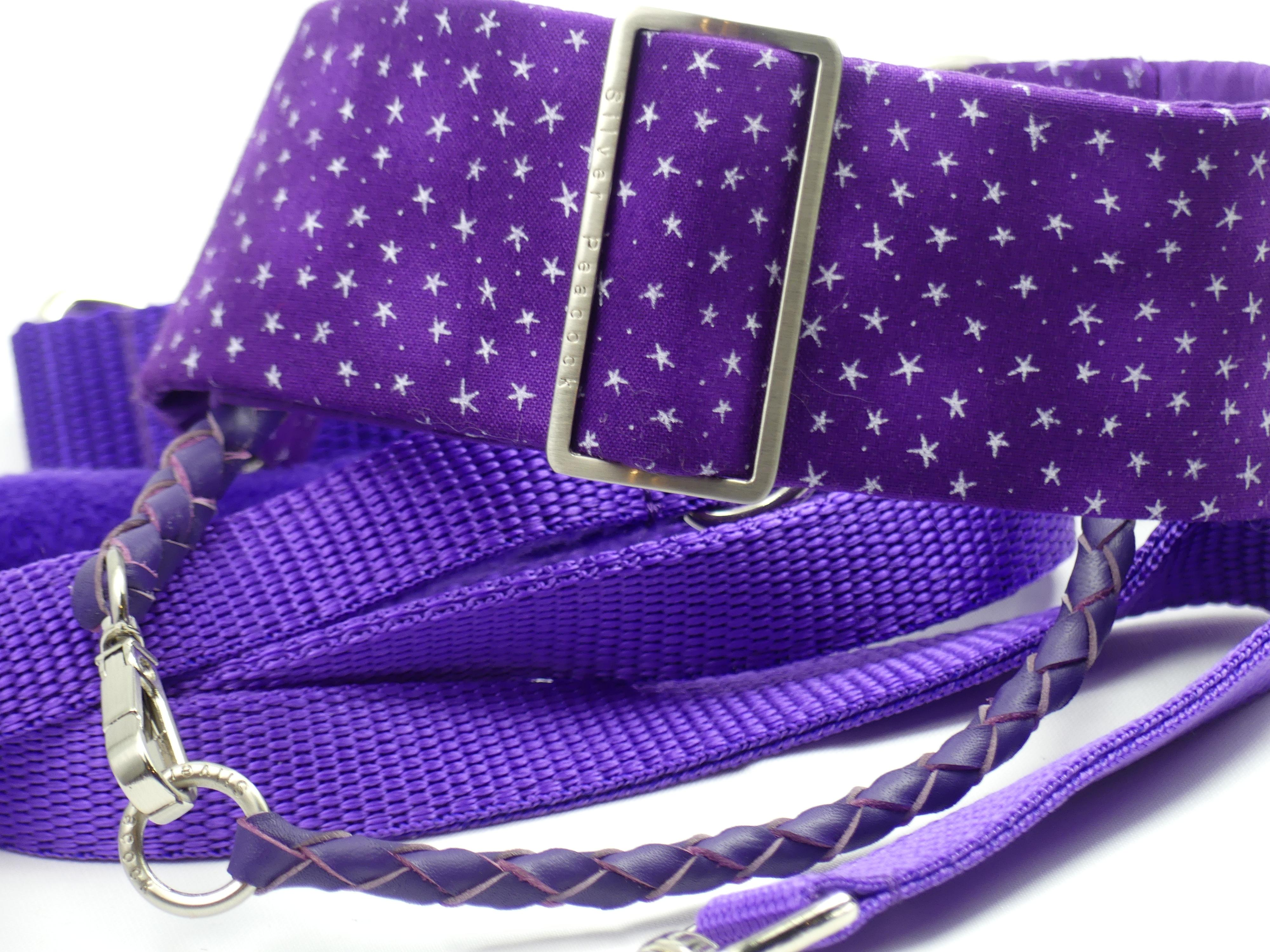 Star Martingale collar with tag collar and lead