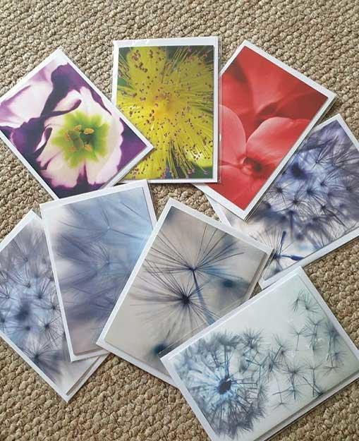 Cards from Echoes and Shadows Photography