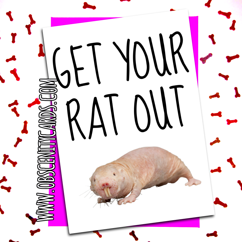 Funny Valentines Day Card get your rat out. Obscene funny offensive birthday cards by Obscenity cards. Obscene Funny Cards, Pens, Party Hats, Key rings, Magnets, Lighters & Loads More!