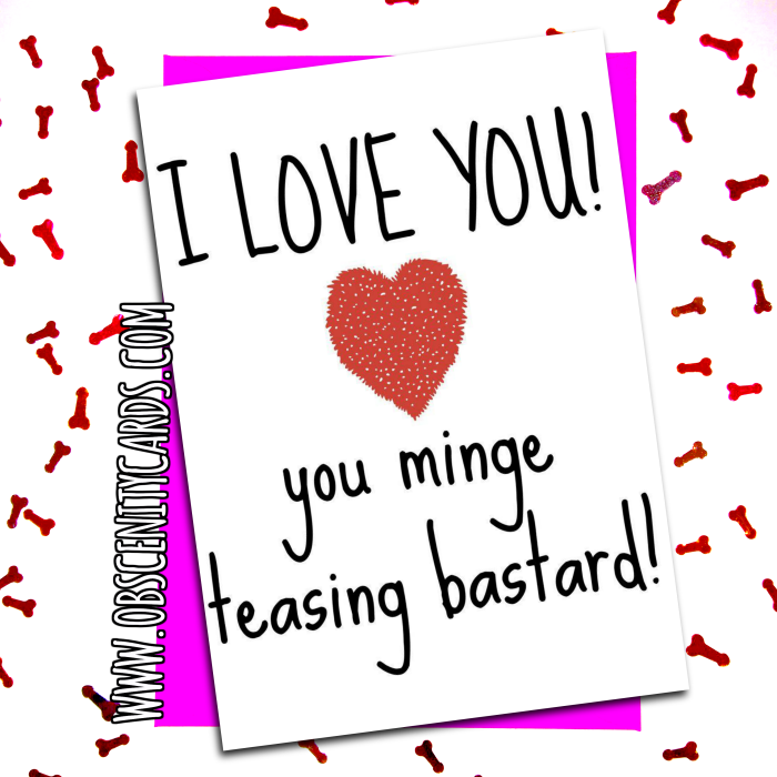 I love you, you Minge Teasing Bastard Valentine / Anniversary Card. Obscene funny offensive birthday cards by Obscenity cards. Obscene Funny Cards, Pens, Party Hats, Key rings, Magnets, Lighters & Loads More!