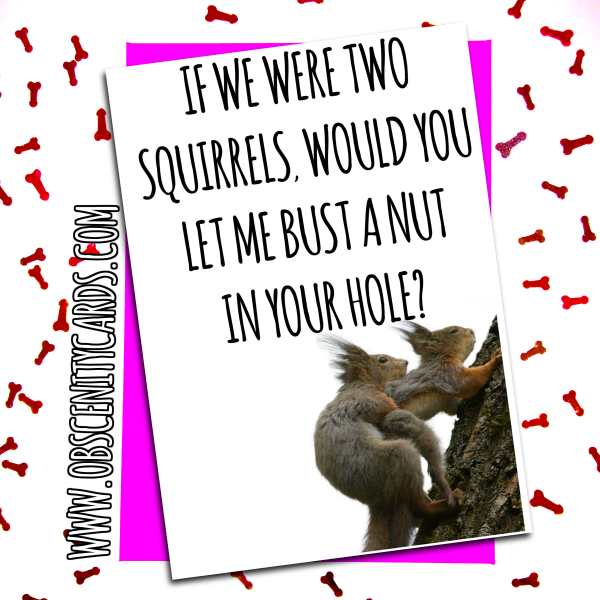 FUNNY VALENTINES DAY CARD - If we were two squirrels, bust a nut in your hole. Obscene funny offensive birthday cards by Obscenity cards. Obscene Funny Cards, Pens, Party Hats, Key rings, Magnets, Lighters & Loads More!