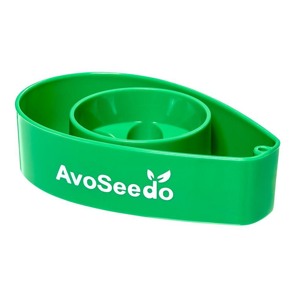 AvoSeedo Plant Care, Soil & Accessories Grow Your Own Avocado Tree