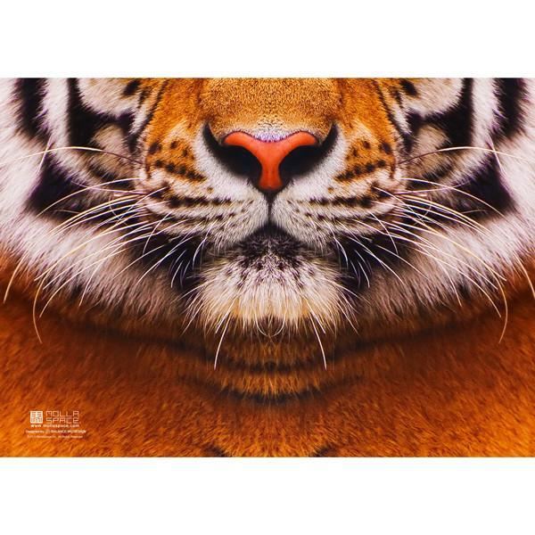 A5 Tiger Notebook