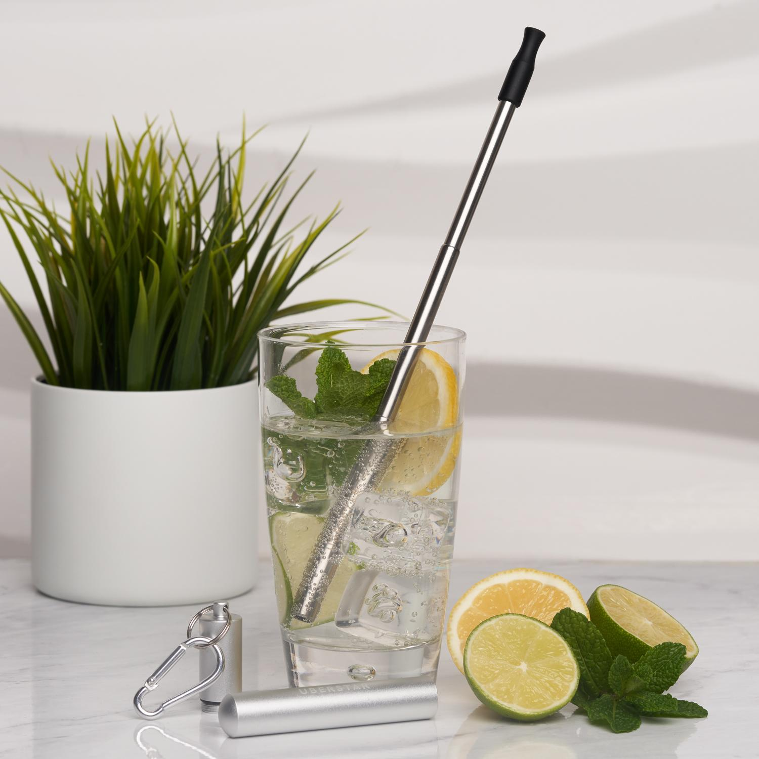 Uberstar Collapsible Travel Stainless Steel Straw - Silver