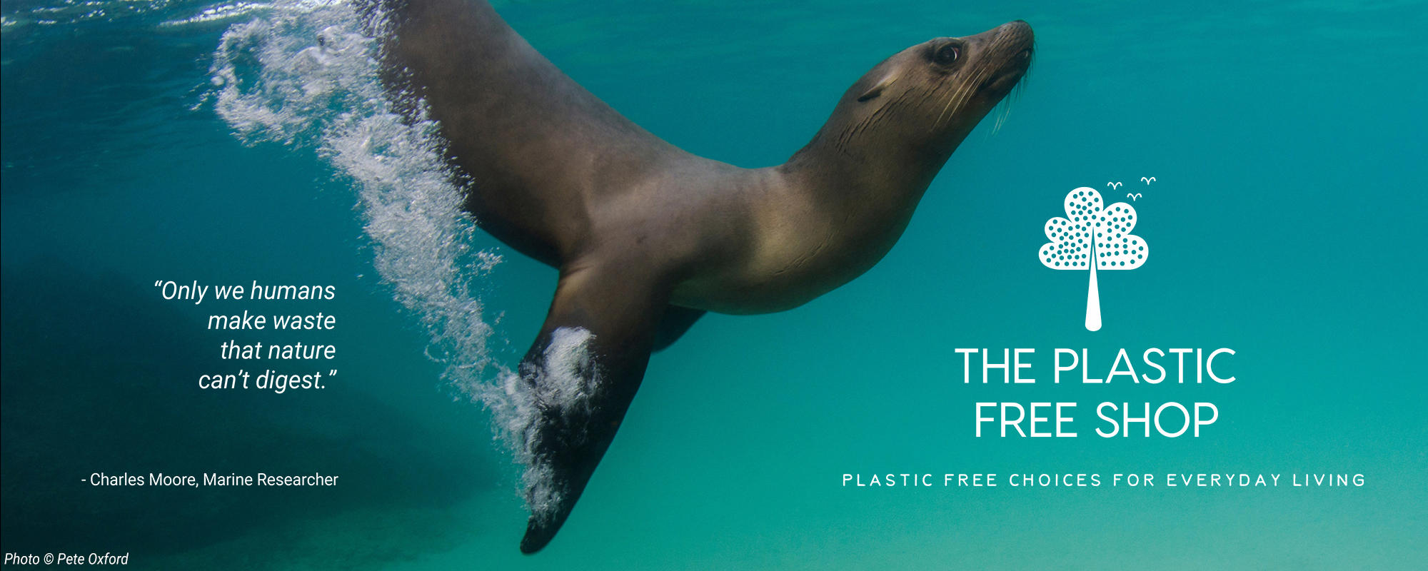 The Plastic Free Shop: Plastic free choices for everyday living