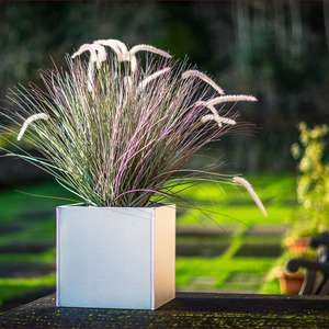 aluzinc metal garden planter with grasses