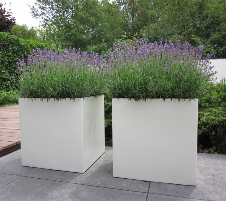 fibreglass_garden_planter_cube_square_modern_kent_uk