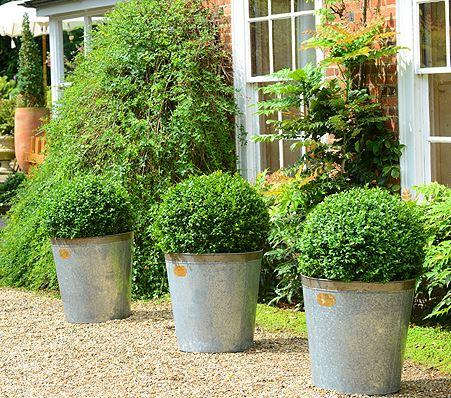 set of 3 metal zinc garden planters in a row