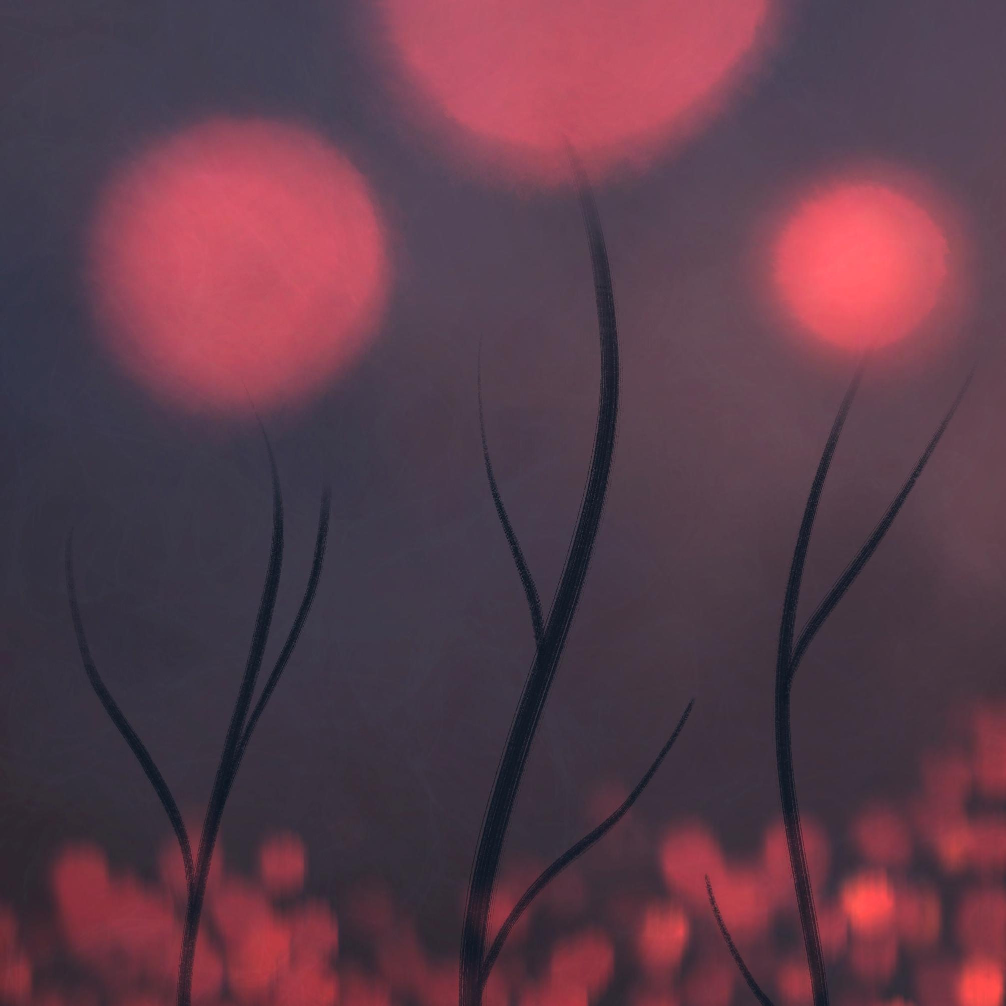 An abstract digital painting by Lily Bourne titled Ember Flowers. A red themed artwork with red ball flowers shown at dusk.