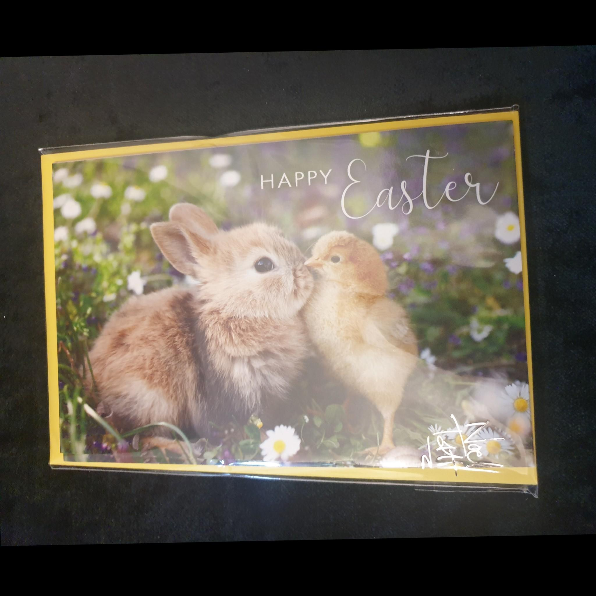 Pack of Easter Cards Bunny & Chick