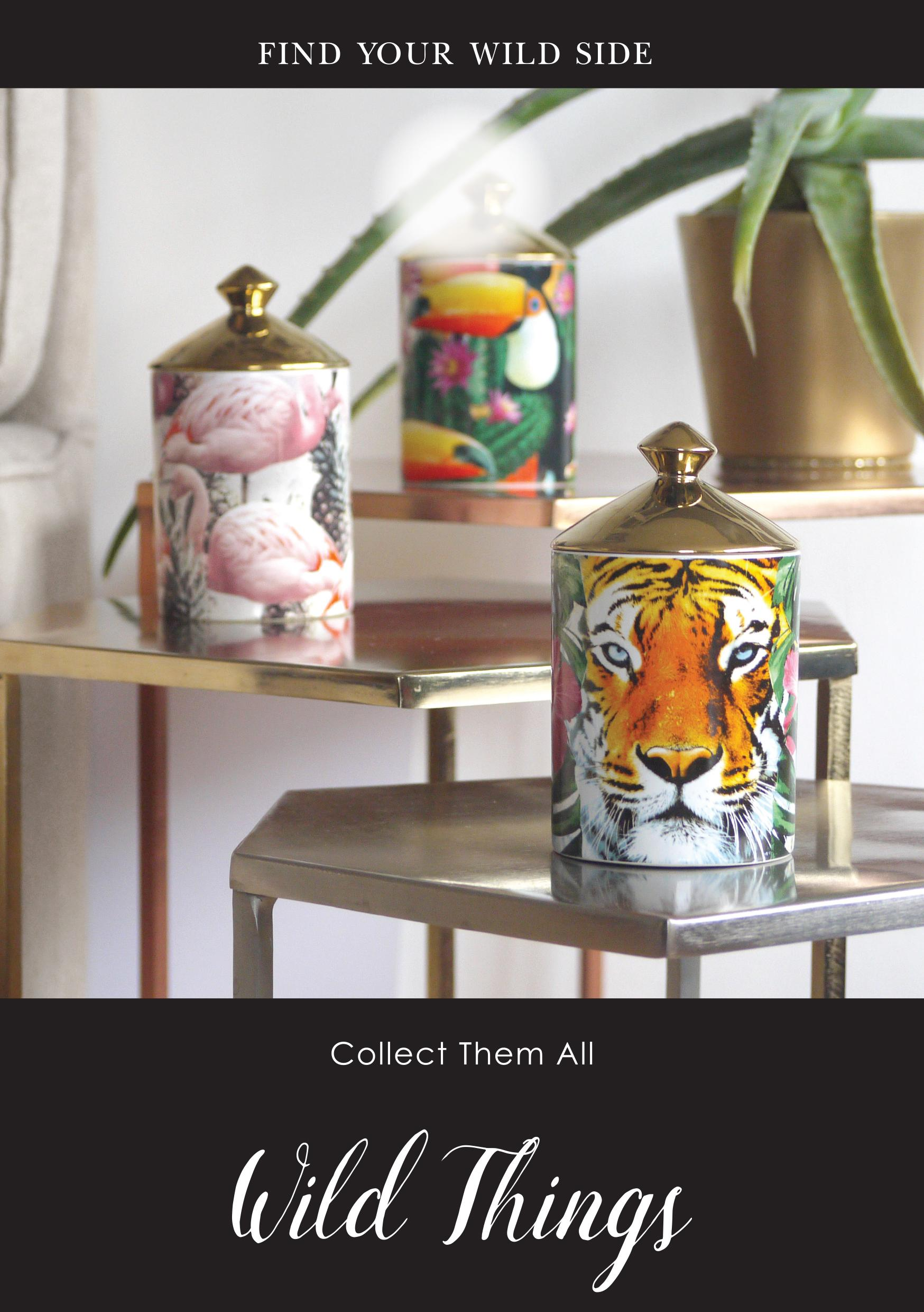 Ashleigh and burwood candle wild things
