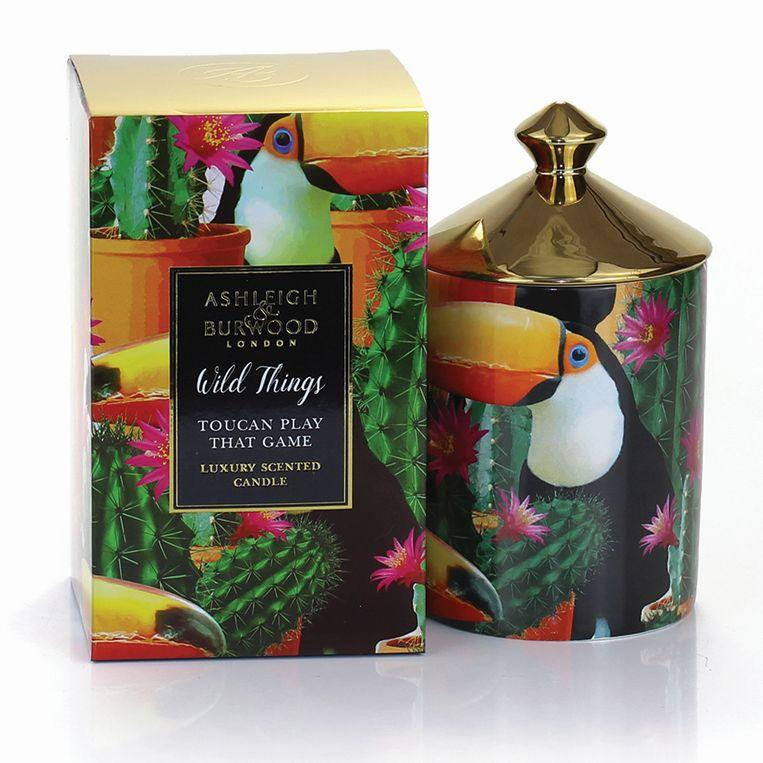 WILD THINGS CANDLE 320g - TOUCAN PLAY THAT GAME - MANGO & NECTARINE