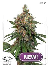 Dutch PassionHiFi 4G Feminised Seeds