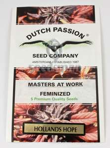 Dutch Passion Holland's Hope Feminised cannabis seeds