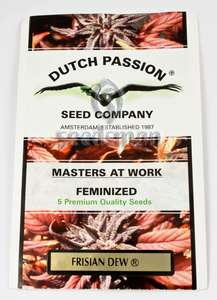 Dutch Passion Frisian Dew Feminised cannabis seeds