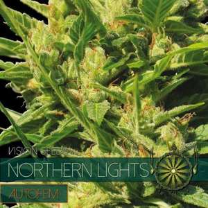 Vision SeedsNorthern Lights Auto Feminised Seeds