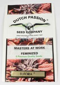 Dutch Passion Euforia Feminised cannabis seeds