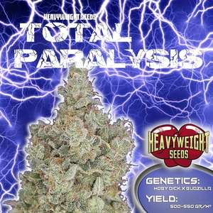 Heavyweight SeedsTotal Paralysis Feminised Seeds
