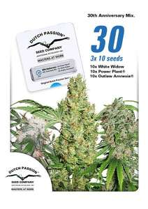 Dutch Passion30th Anniversary Mix Feminised Seeds - 30