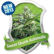 Royal Queen SeedsSweet Skunk Auto Feminised Seeds