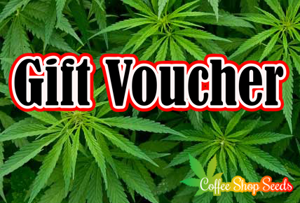 Gift Voucher Giveaway