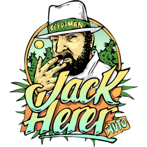 Jack Herrer Auto Feminised Cannabis Seeds by Seedsman