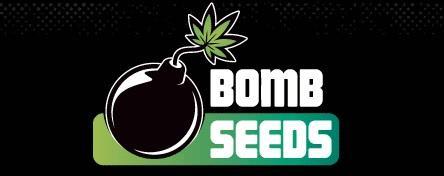 0--bomb-seeds.jpg