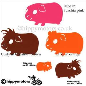 Guinea Pig vinyl car stickers