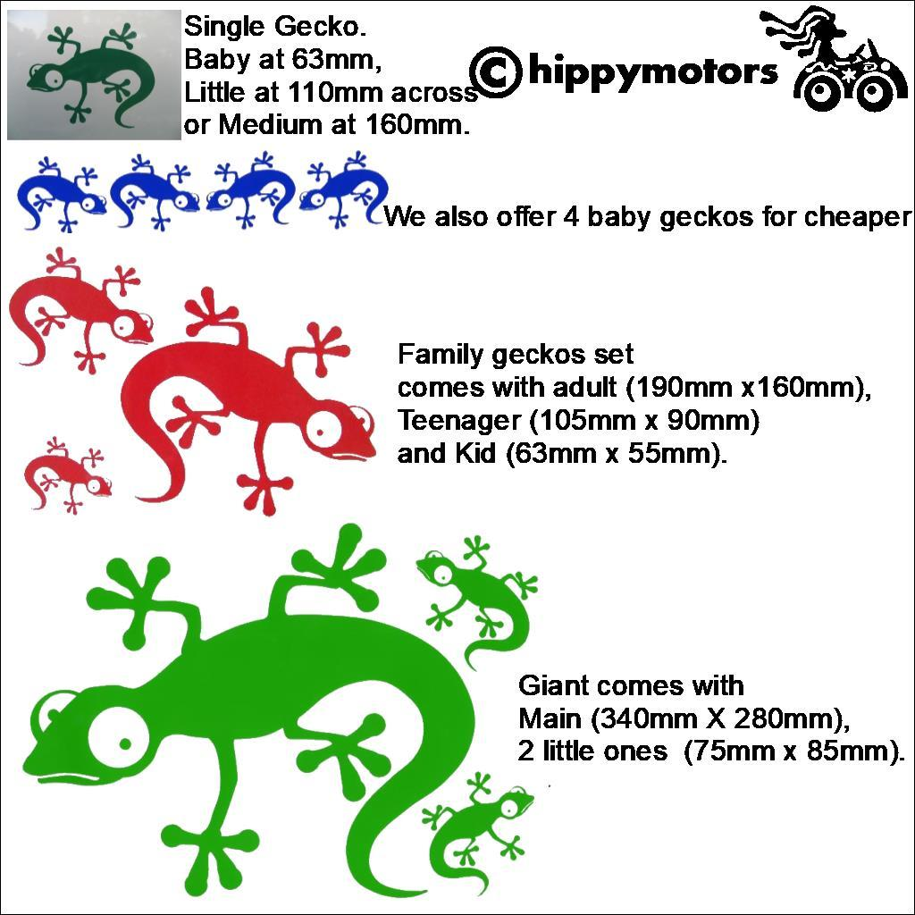 Gecko car stickers by Hippy Motors