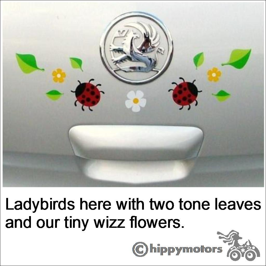 Ladybug decals on a car by Hippy Motors