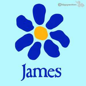 James vinyl sticker for cars windows camper vans laptops