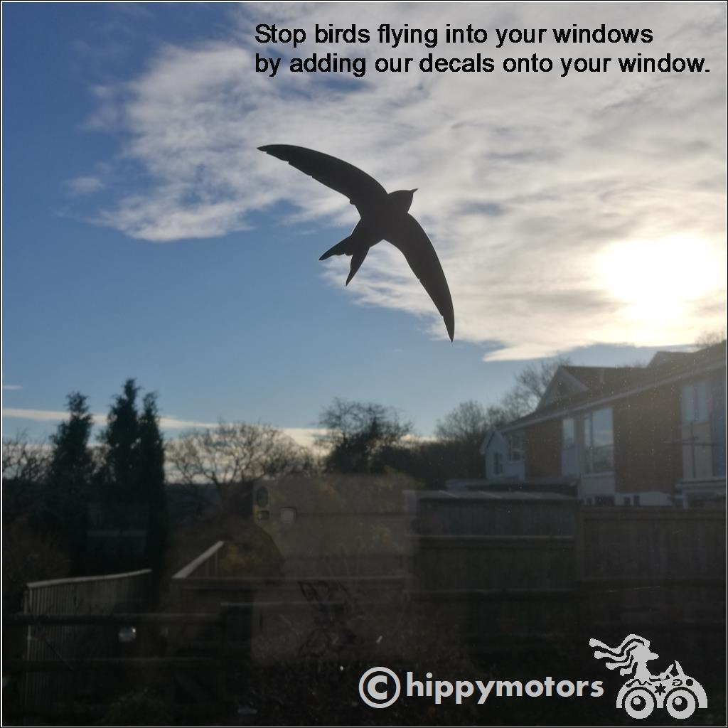 Bird decal on window to stop birds flying into windows