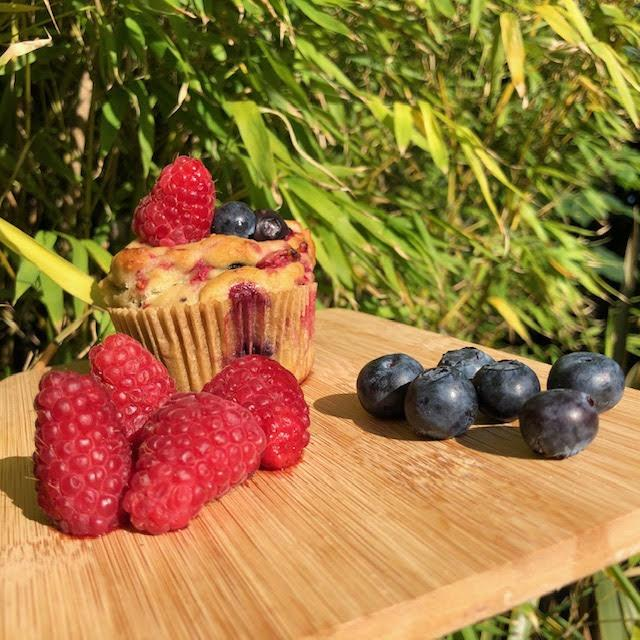 Bliueberry and Raspberry muffin