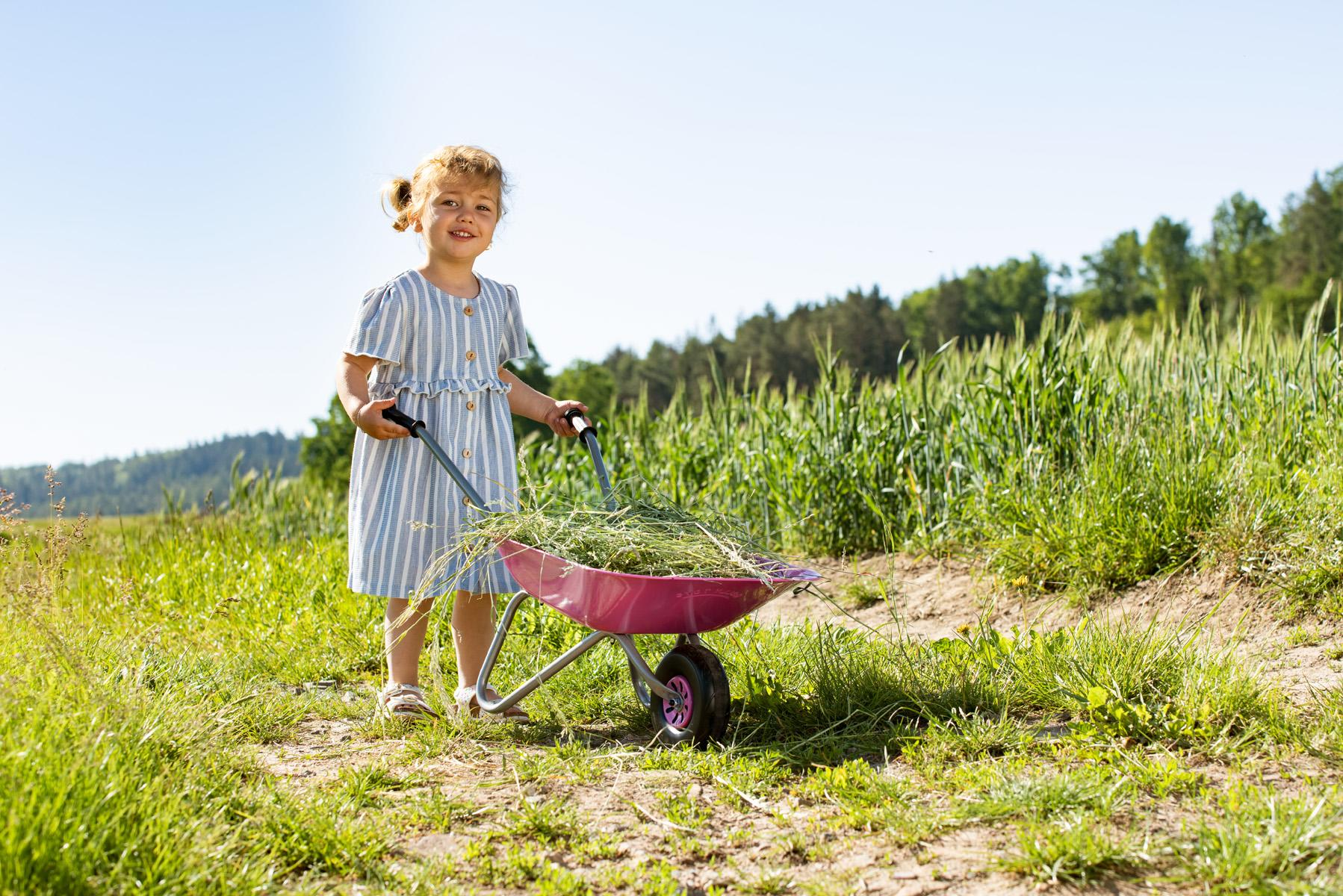 Rolly Pink Wheelbarrow Toymaster Ballina