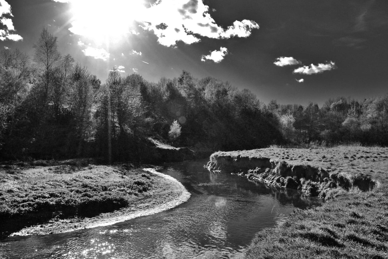 Sunshine on the Wince Brook in black & white