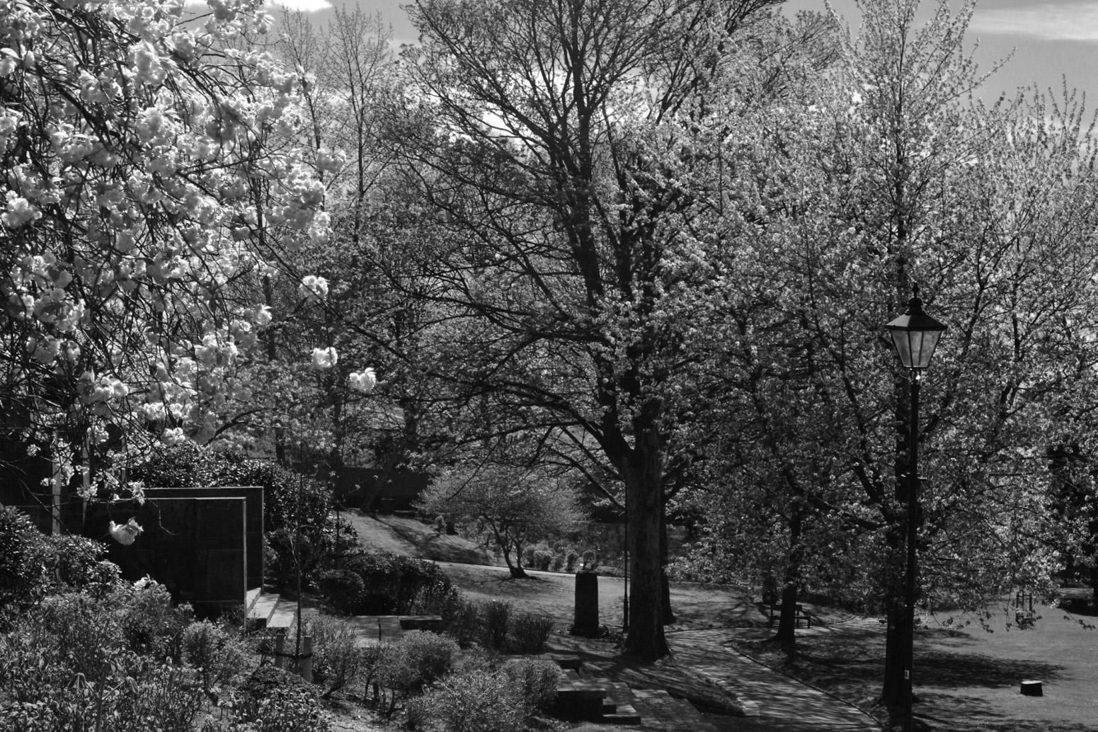Edgar Wood Exedra in Jubilee Park in black & white