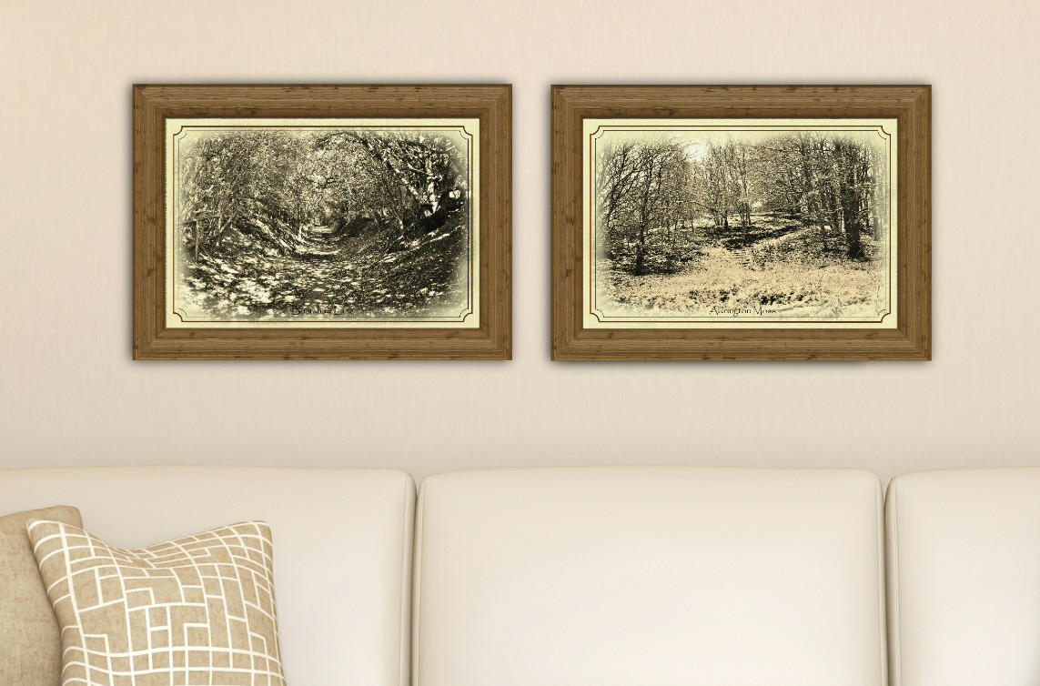 Scenic Seasons, set of two prints