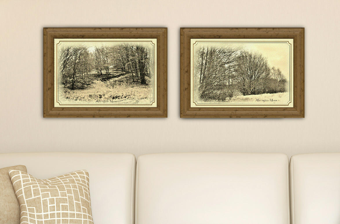 Snowy Alkrington Moss, set of two prints
