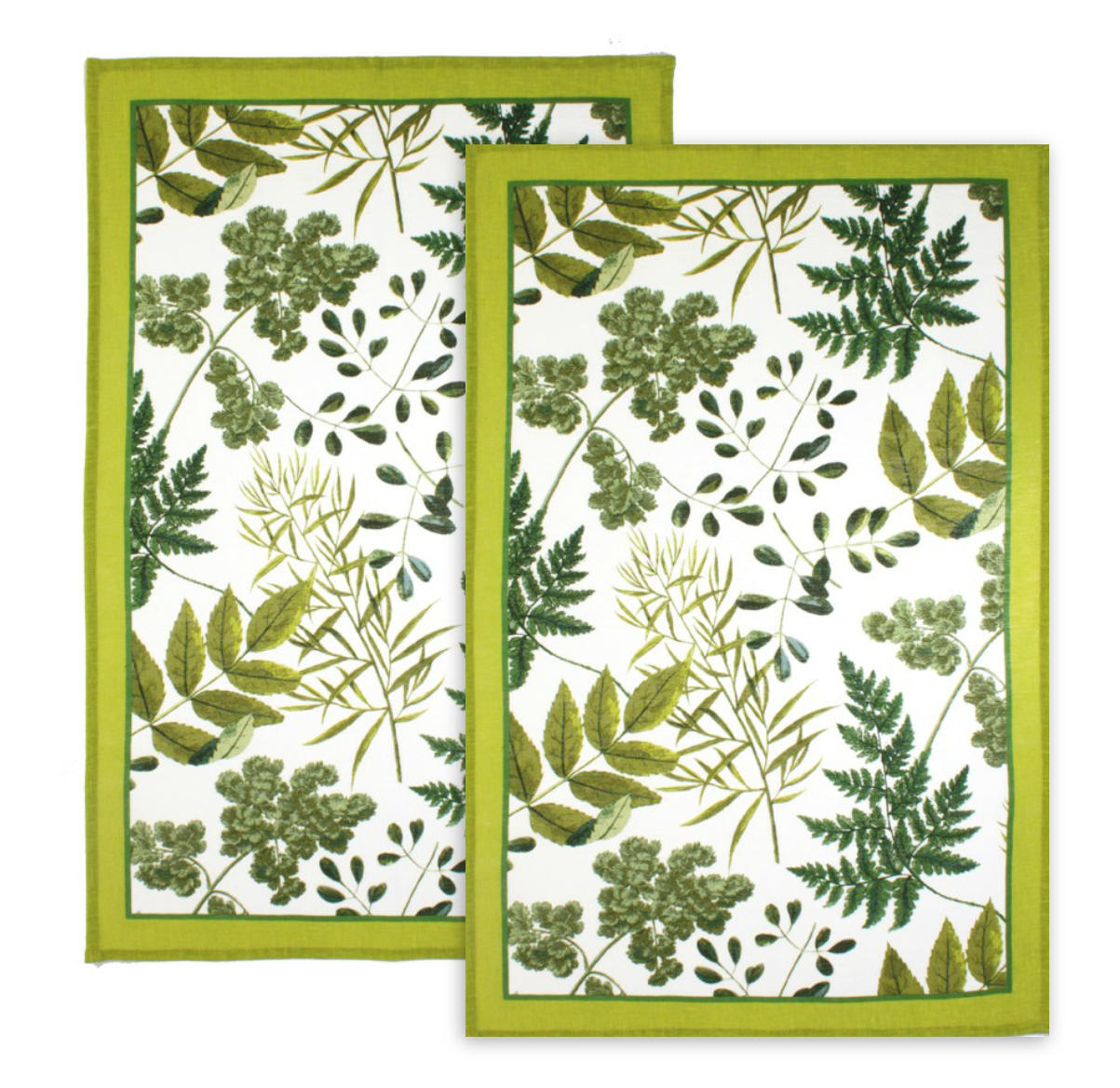 RHS Foliage Pack of 2 Tea Towels