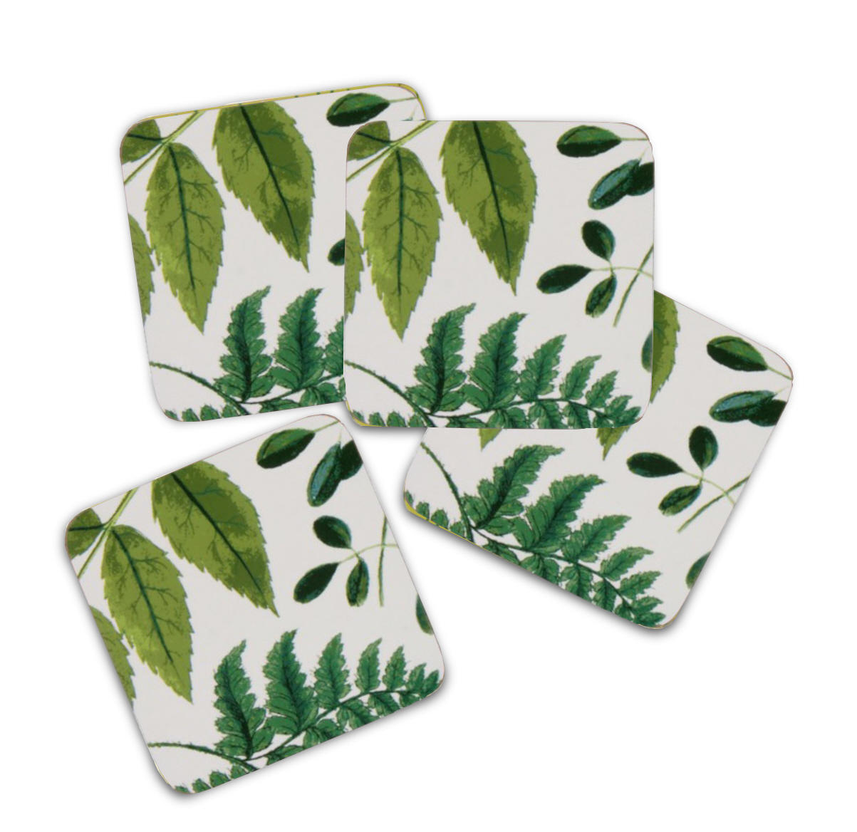 RHS Foliage Set of Four Coasters