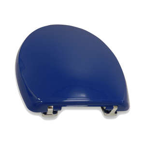 Blue Toilet Seat for Dementia