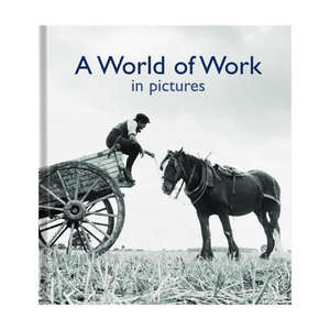 Pictures to Share Book - World Of Work