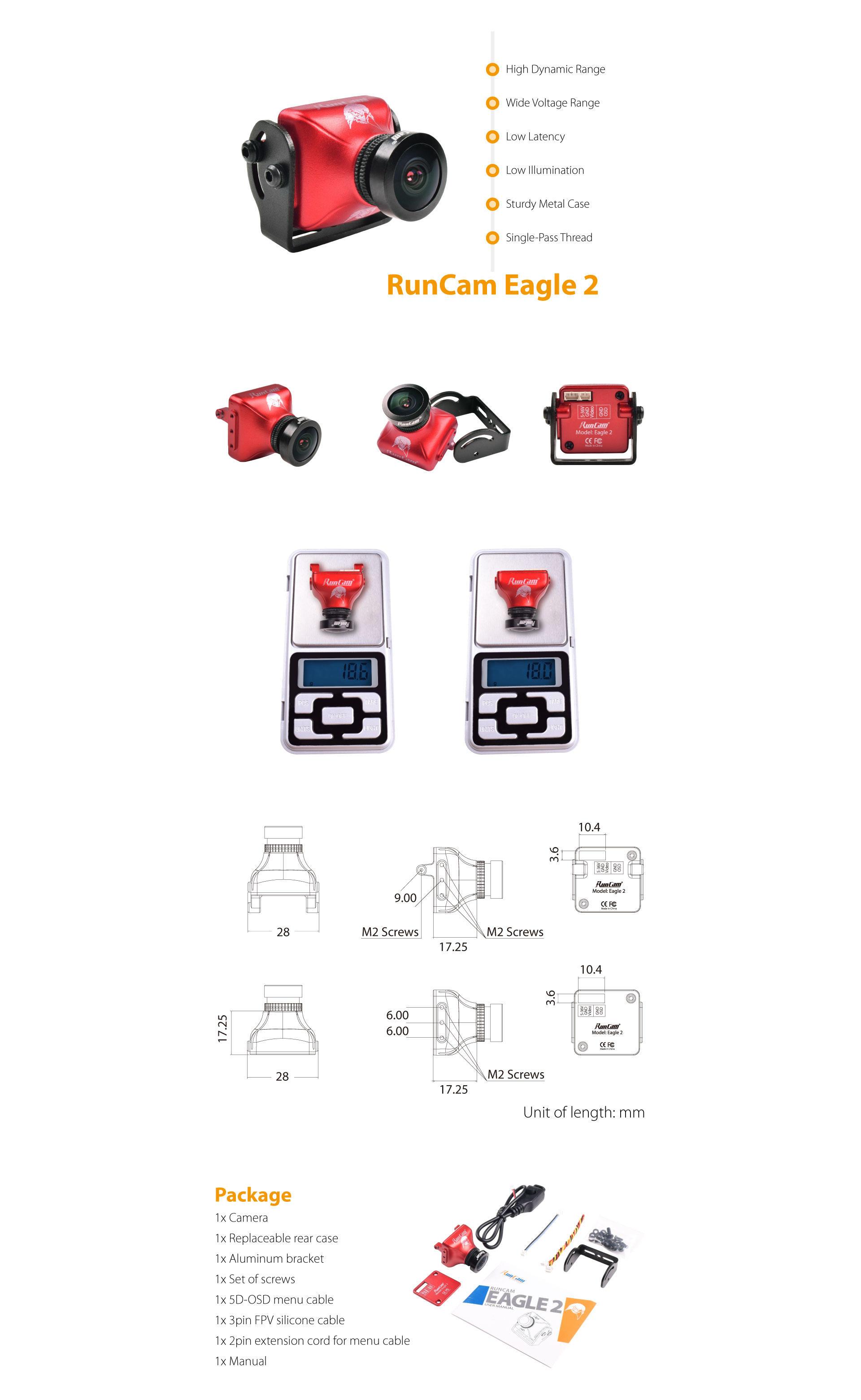 eagle2-web.jpg