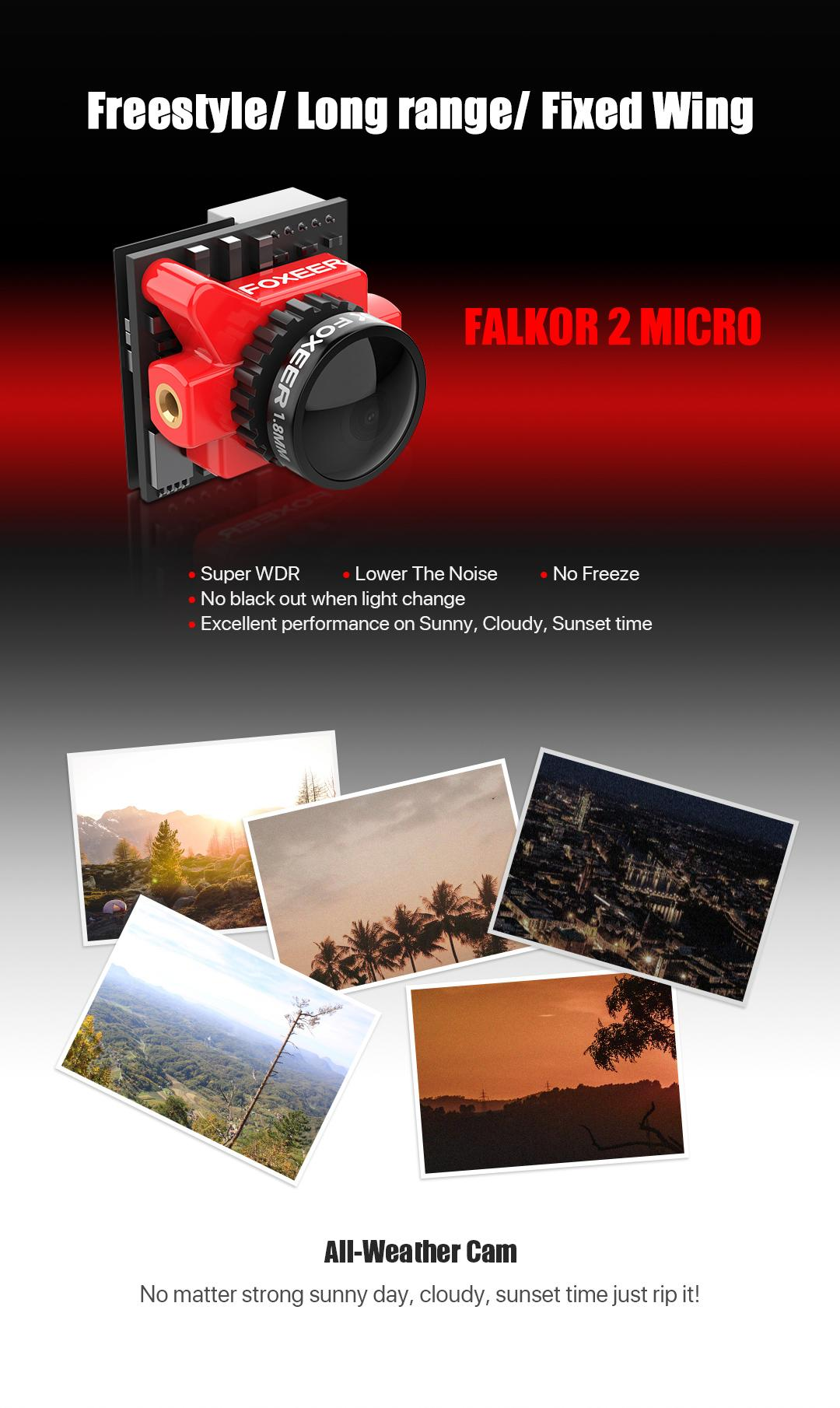 falkor-2-micro1.jpg